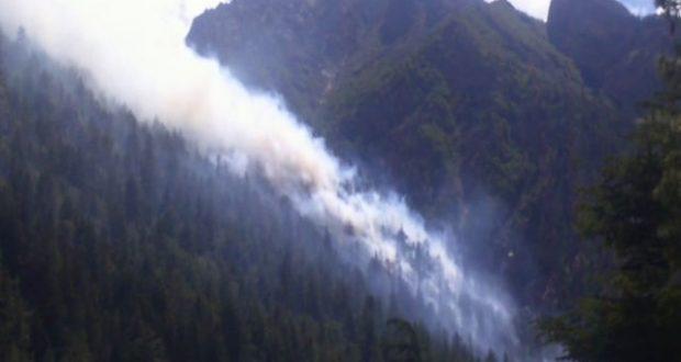 nti-news-himalaya-region-is-burning