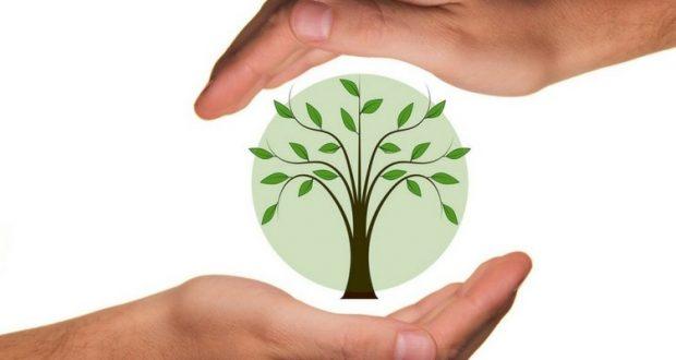 nti-news-/world-environment-day-and-india